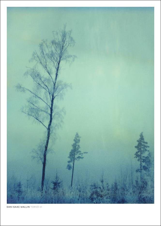 Dan Isaac Wallin Torsö III -juliste 50x70 cm