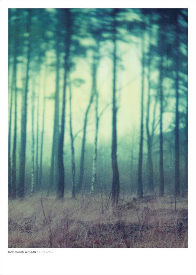 Dan Isaac Wallin Fairyland-juliste 70x100 cm