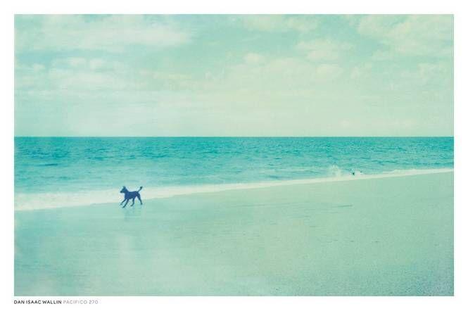 Dan Isaac Wallin Pasifico 270 -juliste, 70 x 50 cm