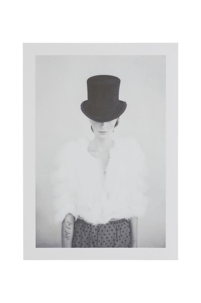 Tove Frank Hat Cat -juliste 50x70cm