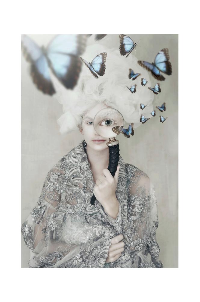 Tove Frank Butterfly Spy juliste 21x30cm