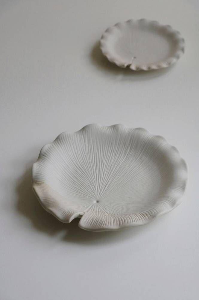 Mimou Lotusblad-koristevati, iso