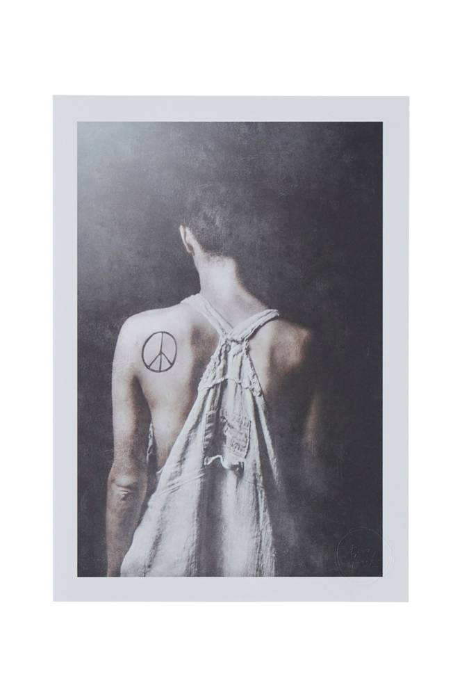 Tove Frank Peace juliste 21x30