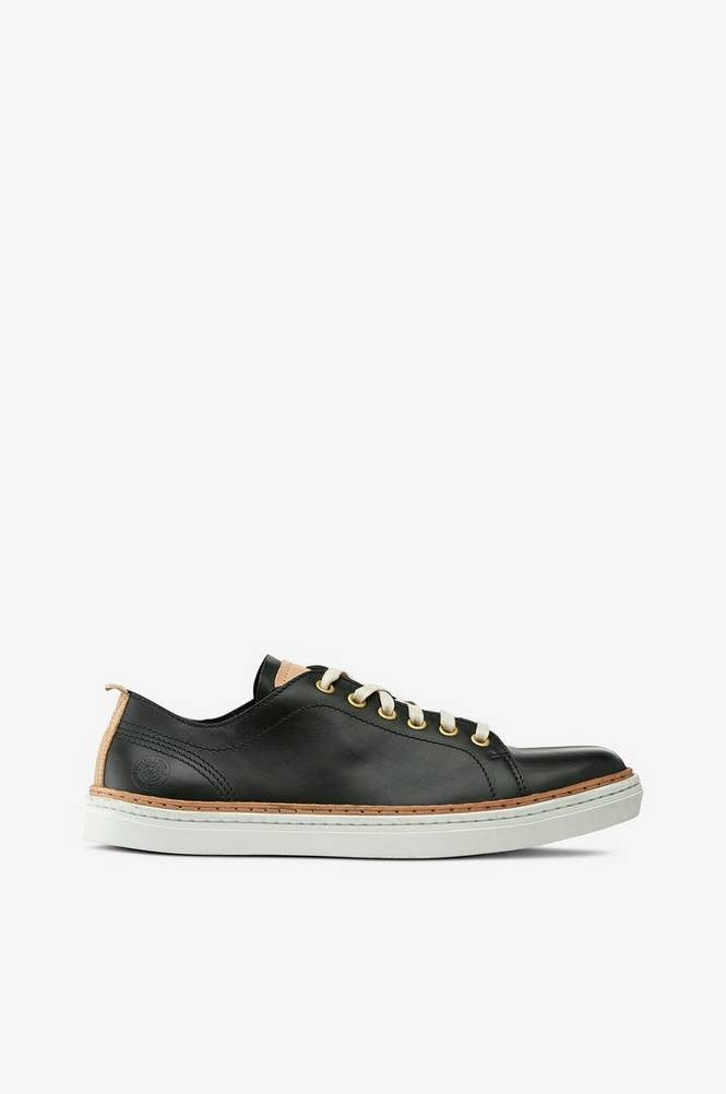 Sneaky Steve Silvermine Leather Low tennarit
