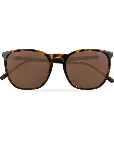 Ralph Lauren 0PH4141 Sunglasses Dark Havana