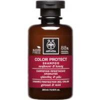 APIVITA Holistic Hair Care Color Protect Shampoo - Sunflower & Honey 250ml