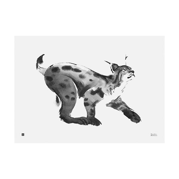 Teemu Järvi Illustrations Ilves juliste, 70 x 50 cm