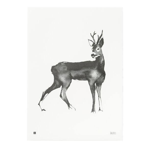 Teemu Järvi Illustrations Kauris juliste, 50 x 70 cm