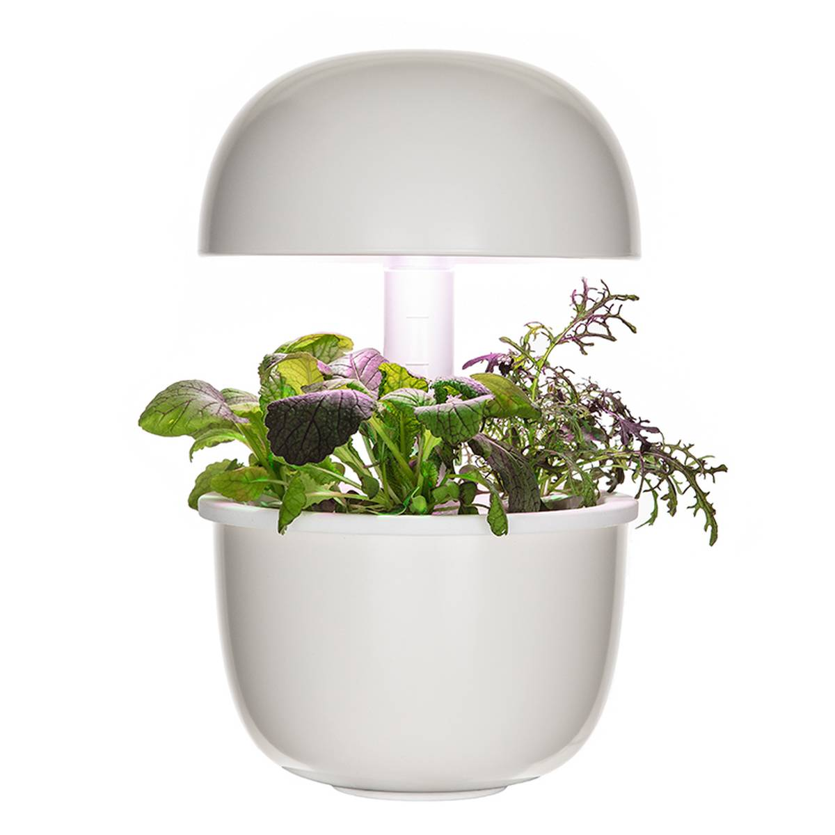 Plantui Smart Garden 3e, valkoinen