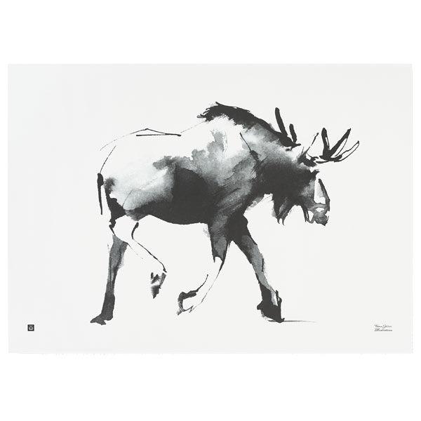Teemu Järvi Illustrations Hirvi juliste, 70 x 50 cm