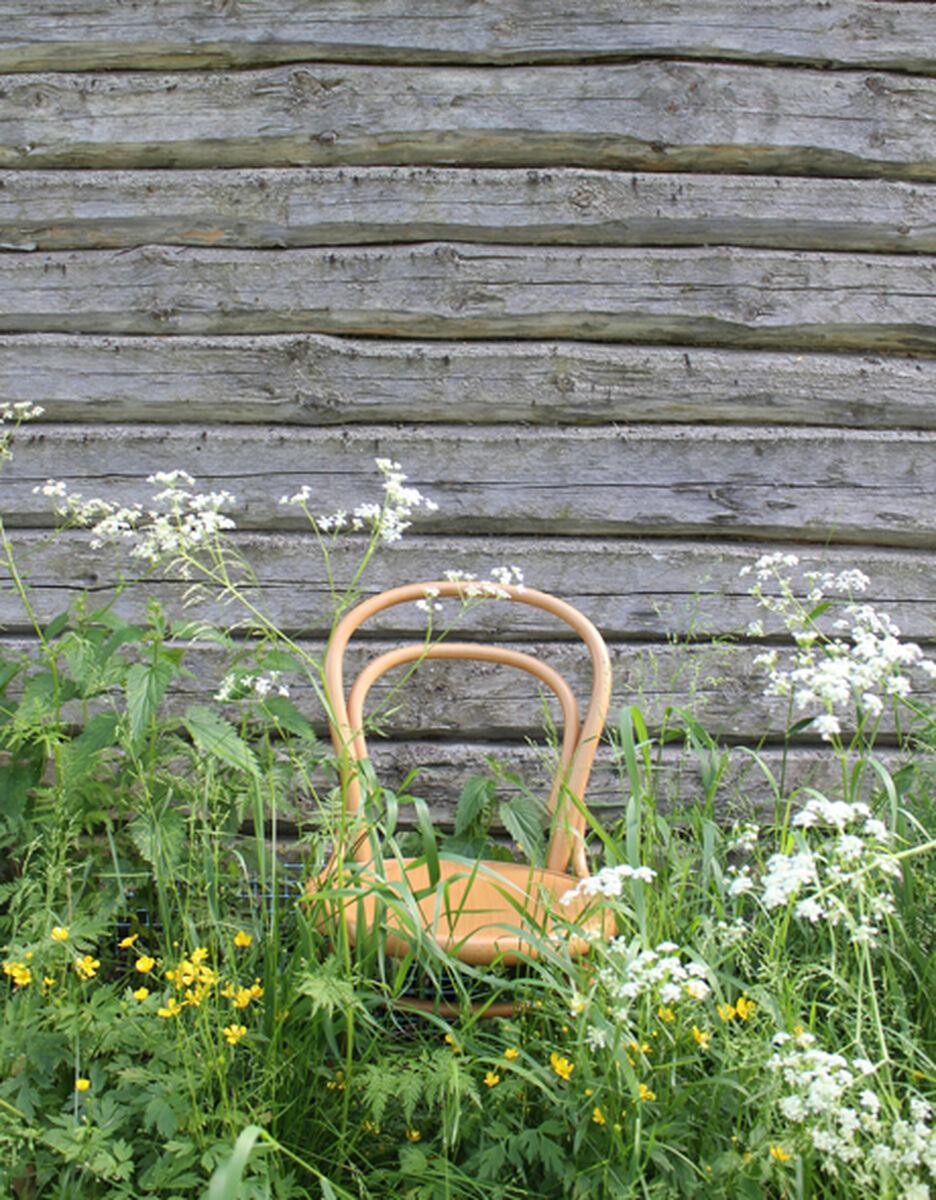 TON Chair 14 tuoli, py�kki