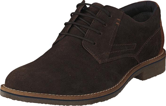 Senator 451-4467 Dark Brown, Kengät, Matalapohjaiset kengät, Juhlakengät, Ruskea, Miehet, 40