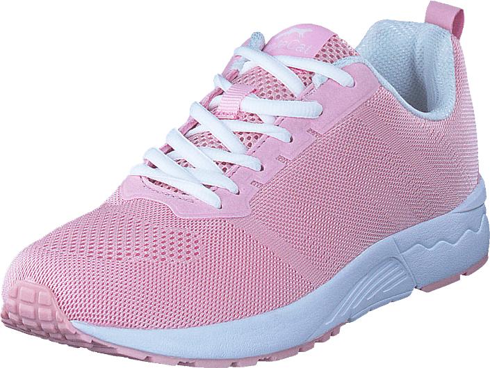 Polecat 435-3410 Pink, Kengät, Sneakerit ja urheilukengät, Varrettomat tennarit, Sininen, Vaaleanpunainen, Naiset, 36