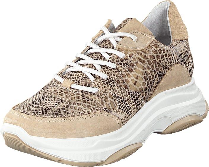 Steve Madden Zela Natural Snake, Kengät, Sneakerit ja urheilukengät, Sneakerit, Beige, Naiset, 36
