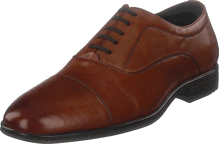 Senator 451-0780 Premium Cognac, Kengät, Matalapohjaiset kengät, Juhlakengät, Ruskea, Miehet, 45