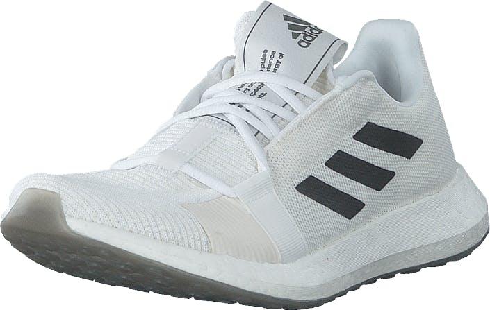 Adidas Sport Performance Senseboost Go M Ftwr White/grey Six/chalk Whit, Kengät, Tennarit ja Urheilukengät, Urheilukengät, Valkoinen, Miehet, 42
