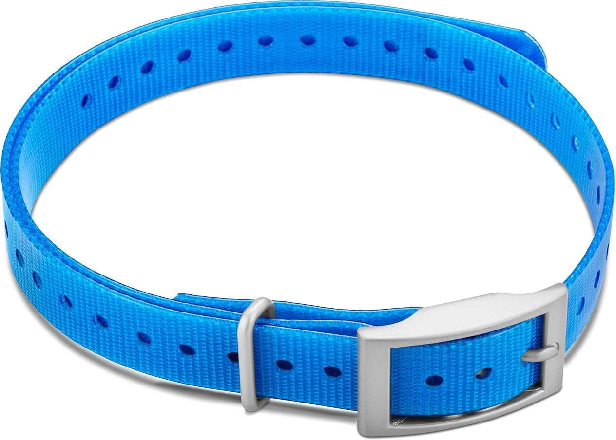 """Image of Garmin Halsbandsrem 3/4"""""""" med fyrkantigt spänne blå"""