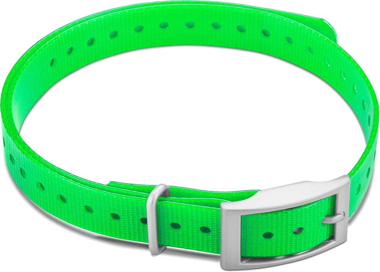"""Image of Garmin Halsbandsrem 3/4"""""""" med fyrkantigt spänne grön"""