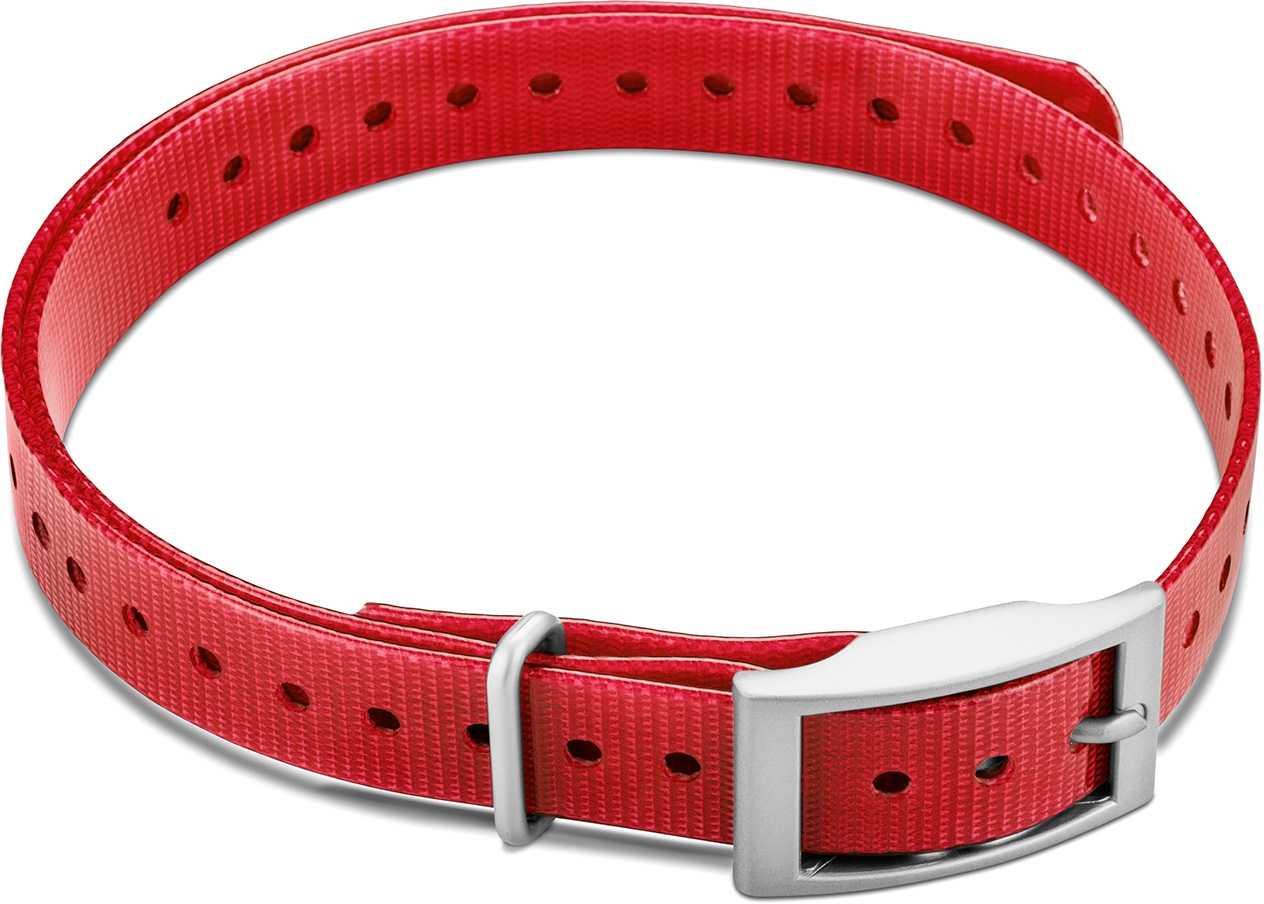 """Image of Garmin Halsbandsrem 3/4"""""""" med fyrkantigt spänne röd"""