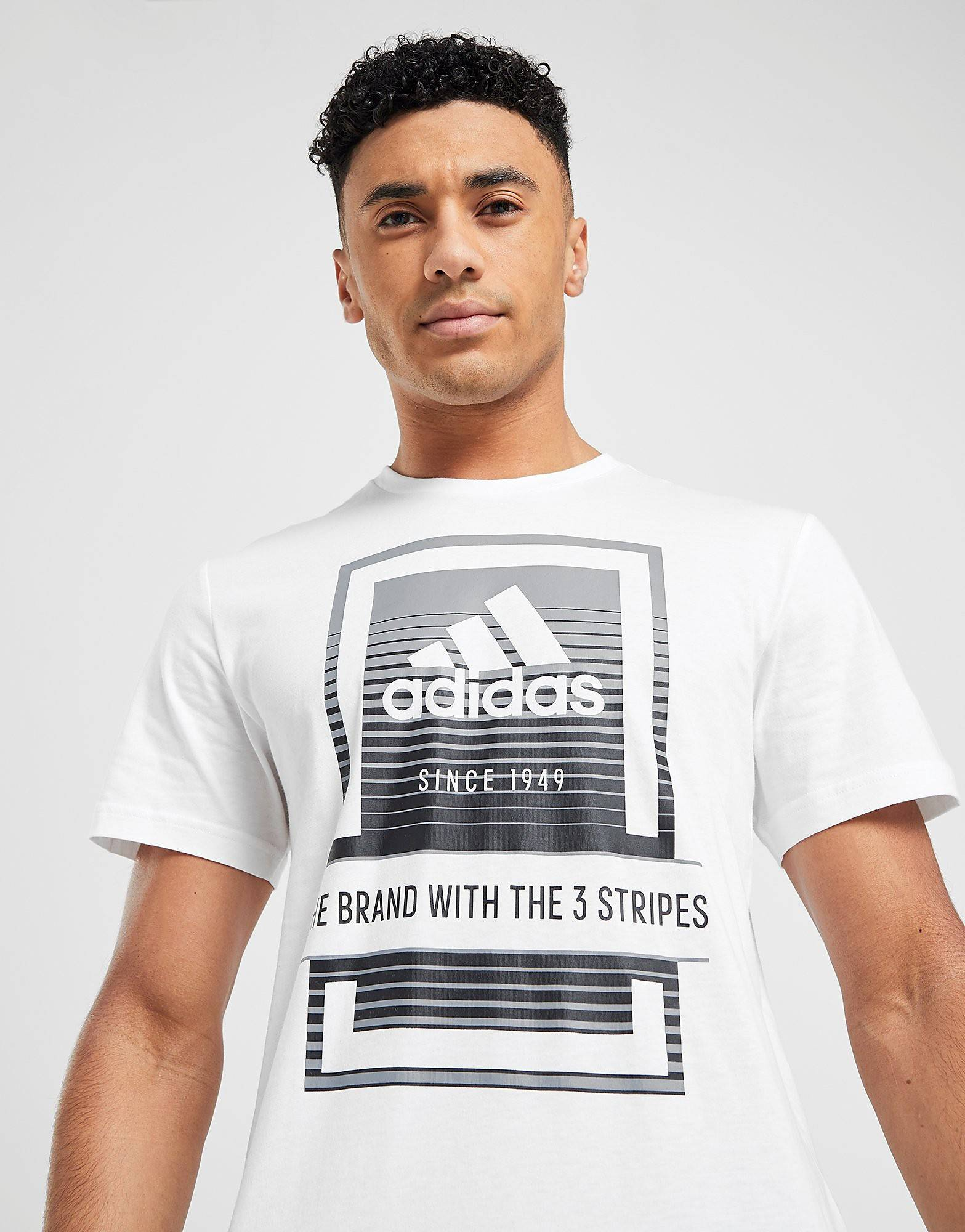 Image of Adidas Box Fade Logo T-Paita Miehet - Only at JD - Mens, Valkoinen