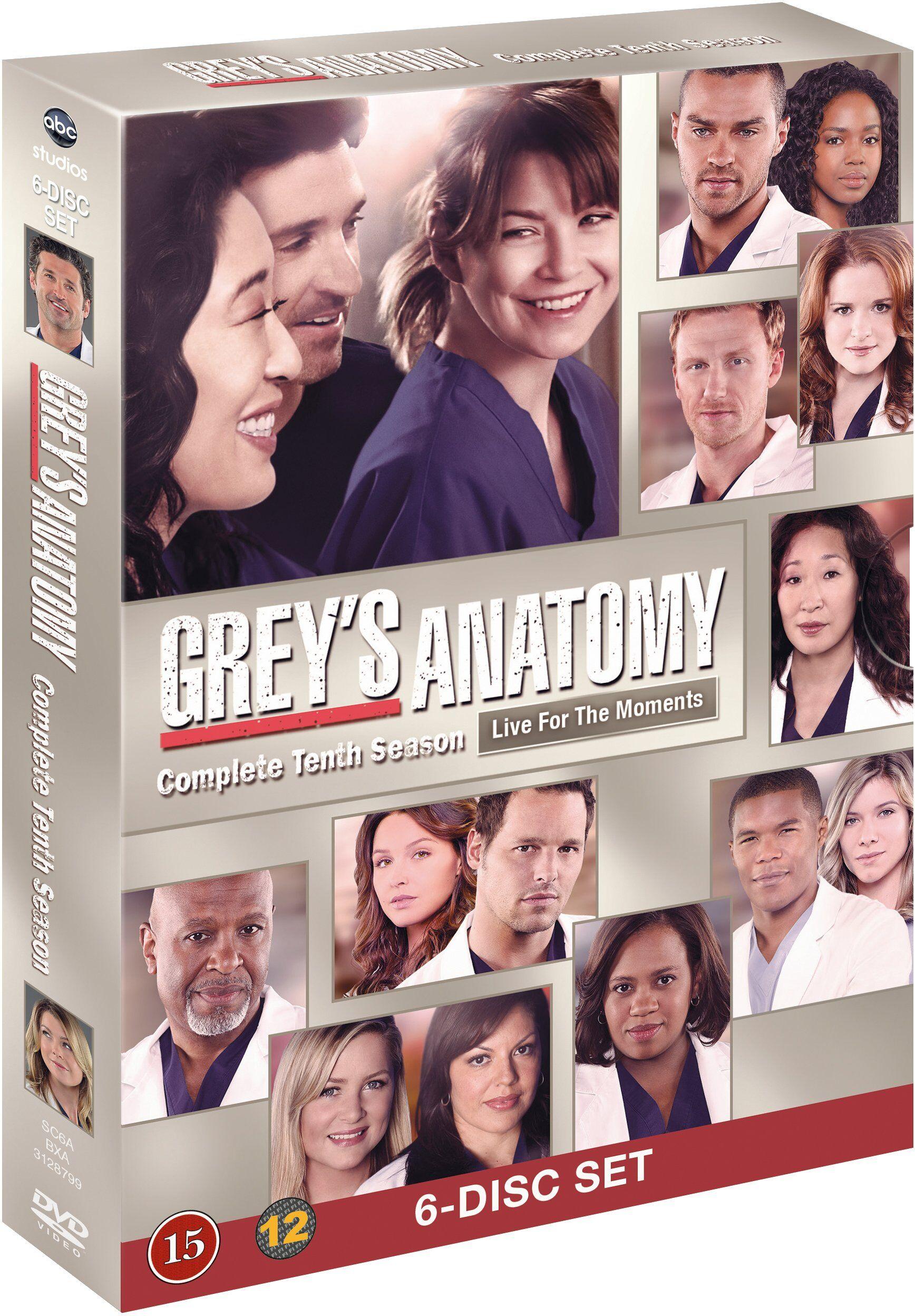 Greys Anatomy/Greys Hvide Verden saeson 10 DVD
