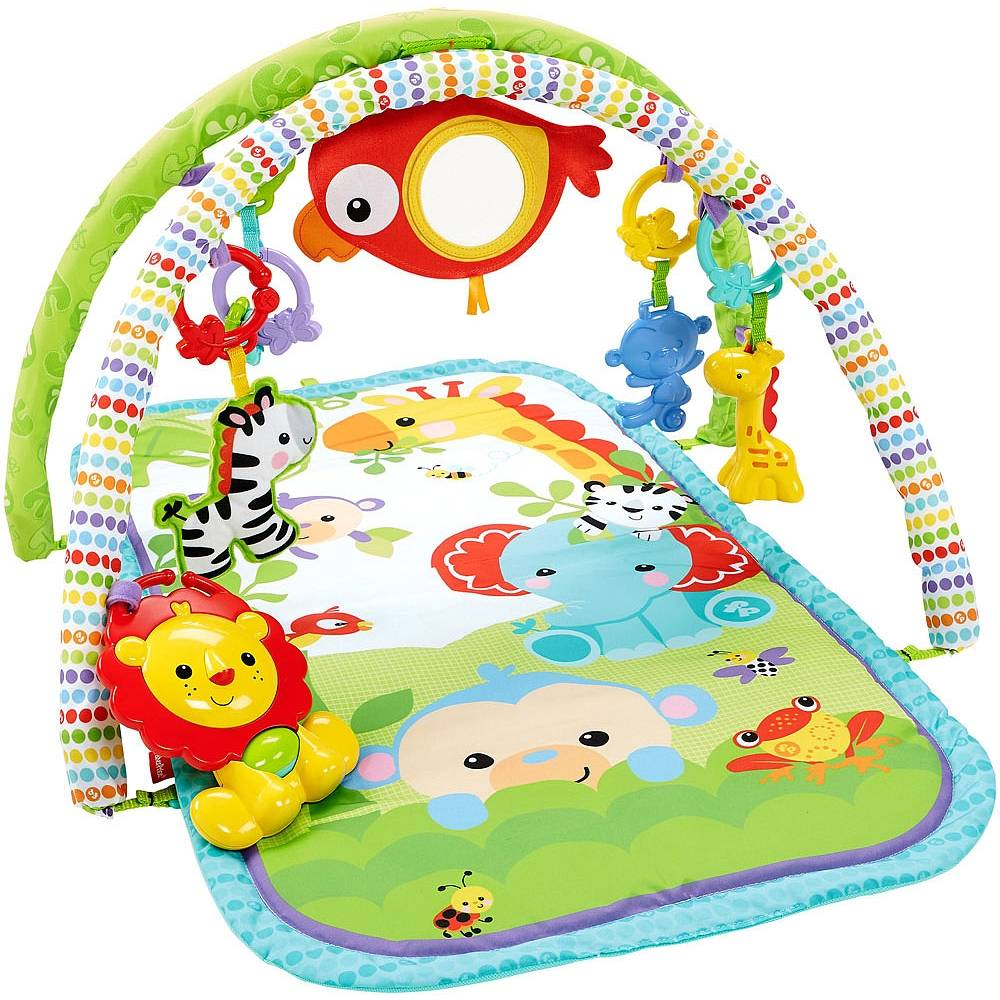 Fisher-Price in 1 Activity Gym (CHP85)