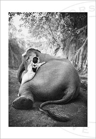 Love Warriors Adele & Ketut valokuvaprintti - 100 x 70