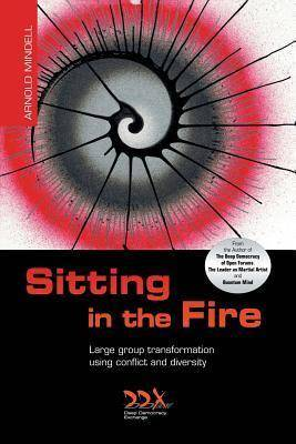 Sitting in the Fire by Arnold Mindell