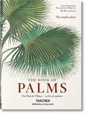 von Martius. The Book of Palms by H. Walter Lack