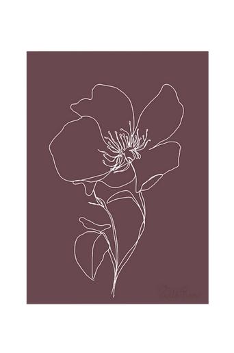 Kortkartellet Juliste Wild Rose  - White Line