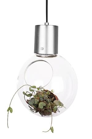 Globen Lighting Kattolamppu Mini Hole Selkeä/Harjattu Kromi