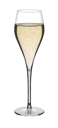 PEUGEOT Esprit Champagnelasit 4-pack