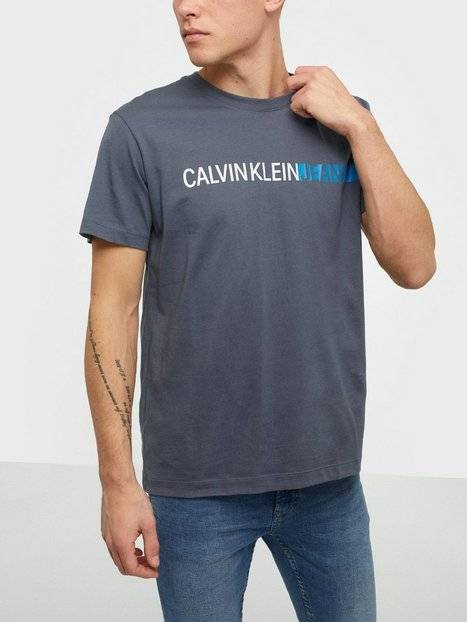 Image of Calvin Klein Jeans Stripe Institutional Logo Tee T-paidat ja topit Grey