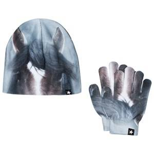 Molo Unisex Winter sets Brown Kaya Set Misty Pony
