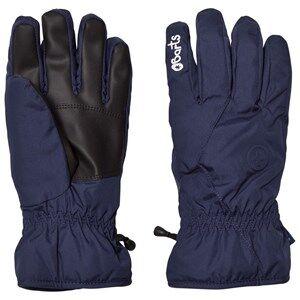 Barts Boys Gloves and mittens Navy Basic Skigloves Navy