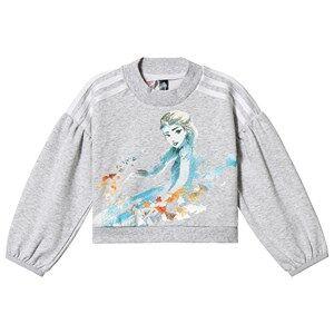 adidas Performance Frozen Sweatshirt Grey 4-5 years (110 cm)