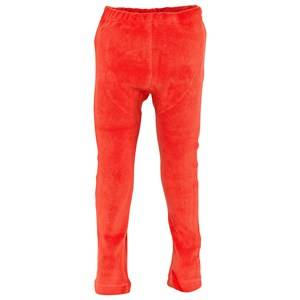 Shampoodle Unisex Childrens Clothes Bottoms Orange Play Tights/Leggings Mandarine