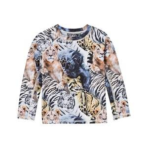 Molo Unisex Swimwear and coverups Multi Swimming UV-Top Neptune Wild Cats