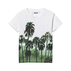 Molo Boys Tops Multi Rubin T-shirt Palm Forest