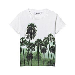 Molo Boys Tops Rubin T-shirt Palm Forest