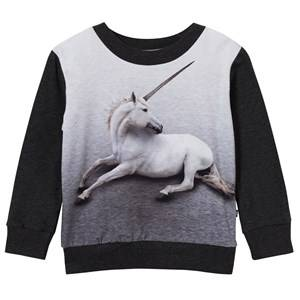 Image of Molo Unisex Jumpers and knitwear Black Magine Sweatshirt Unicorn