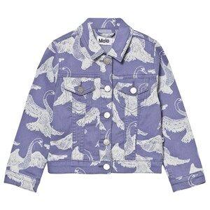 Molo Girls Coats and jackets Blue Hansine Jacket Swans