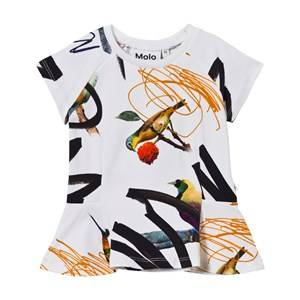 Molo Girls Tops Multi Robbin T-Shirt Street Birds