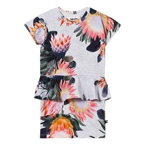 Image of Molo Girls Dresses Multi Christina Dress Short Sleeve Sugar Flowers