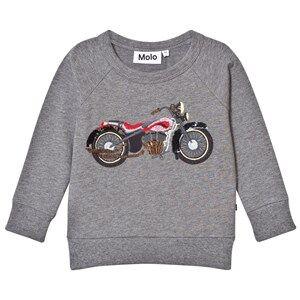 Molo Girls Jumpers and knitwear Grey Mandie Sweatshirt Grey Melange