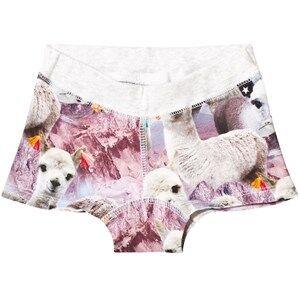 Molo Girls Underwear Multi Joanna Boy Shorts Lovely Llama