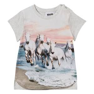 Molo Girls Tops White Erin T-Shirt White Horses