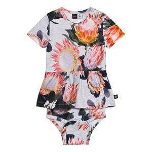 Image of Molo Girls All in ones Pink Frannie Body Dress Sugar Flowers