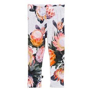 Image of Molo Girls Bottoms Pink Stefanie Leggings Sugar Flowers