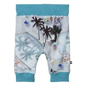Molo Unisex Bottoms Multi Sammy Pants Swimmingpools